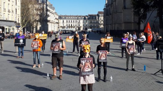 manifestation_mairie_bordeaux_animaux_cirques_triangle