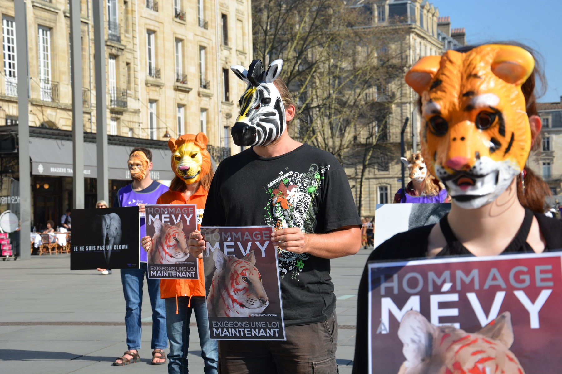 manifestation_mairie_bordeaux_animaux_cirques_triangle1